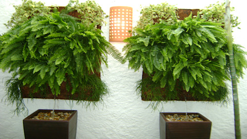 Home improvement: 37 great ideas for creating your own vertical garden