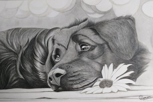 Dog drawing:  Artwork by Indian Art Ideas
