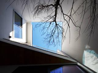 保谷O邸 モダンな庭 の 遠藤誠建築設計事務所(MAKOTO ENDO ARCHITECTS) モダン