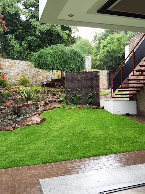 open corner in the rain with succulent wall: modern Garden by Human Voice Architects