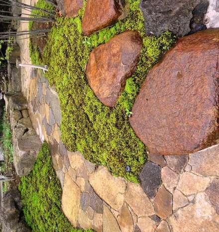 杉苔: 木村博明 株式会社木村グリーンガーデナーが手掛けた庭です。