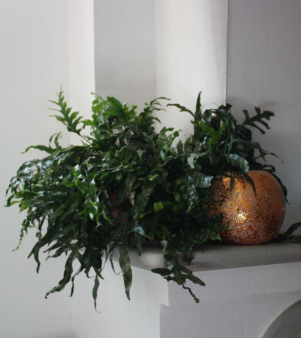 Angolo camino: Sala da pranzo in stile in stile Classico di Tiziano Codiferro -  Master Gardener