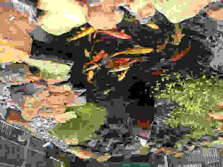 Bio Göl Havuz (Biyolojik Gölet ve Havuz Yapısalları) Country style garden