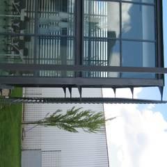 Escritórios da empresa Intertelha: Escritórios e Espaços de trabalho  por JOÂO MIGUEL PINHEIRO - Arquitectos Associados