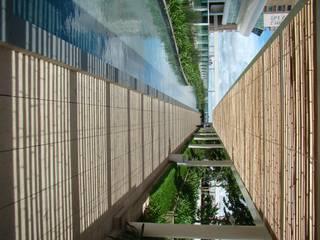 BAMBU CARBONO ZERO Jardines de estilo moderno Bambú