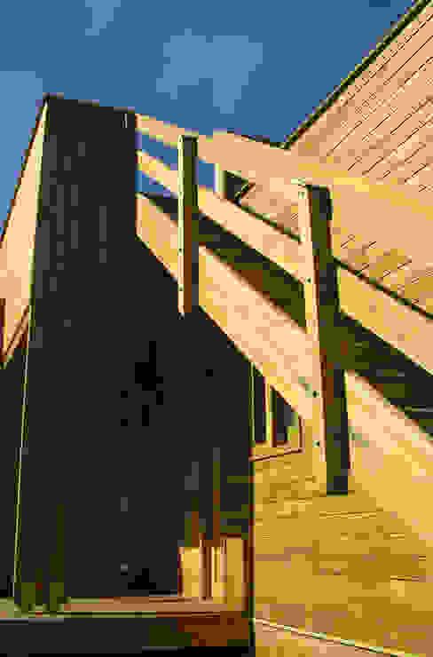 Casa cubica madera Pasillos, vestíbulos y escaleras de estilo moderno de Taller de Ensamble SAS Moderno Madera Acabado en madera