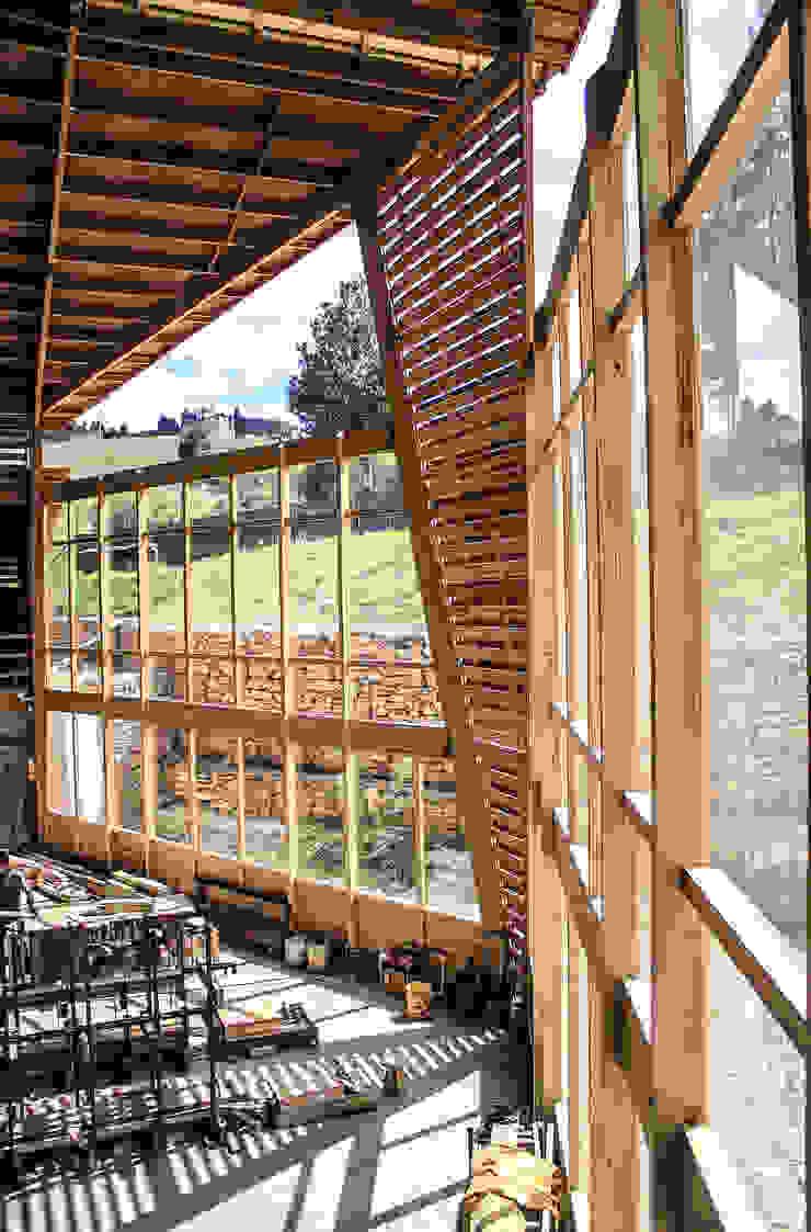 Taller de Ensamble SAS Industriale Weinkeller Holz Holznachbildung