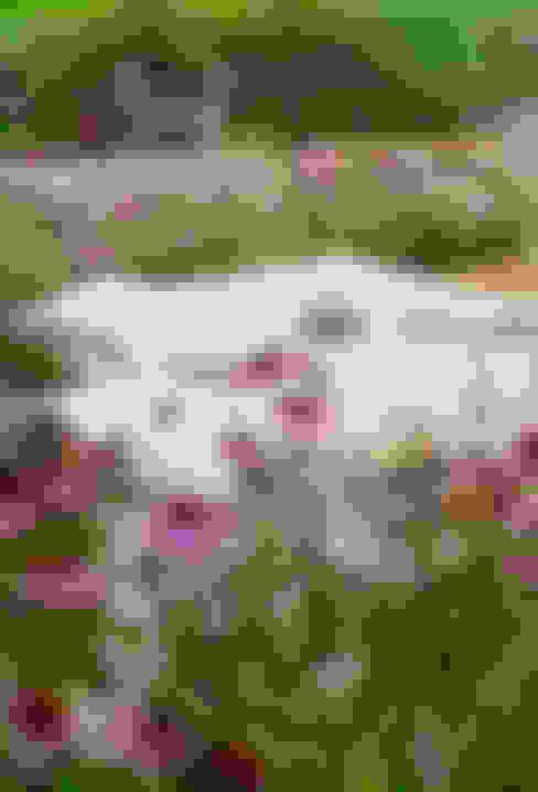 Jardines de estilo  por Barbara Negretti  - Garden design -
