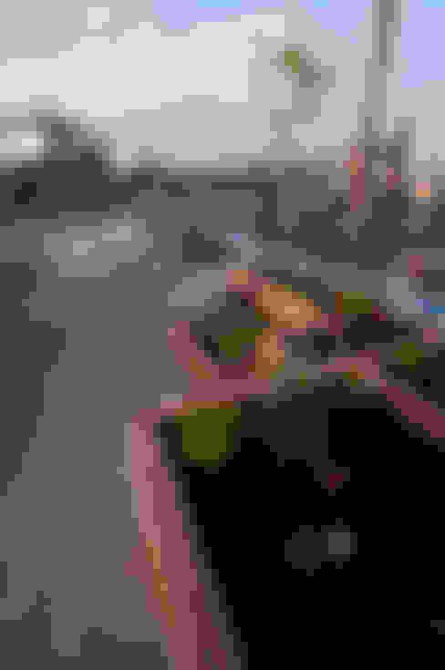 Urban Roof Gardens:  tarz Teras