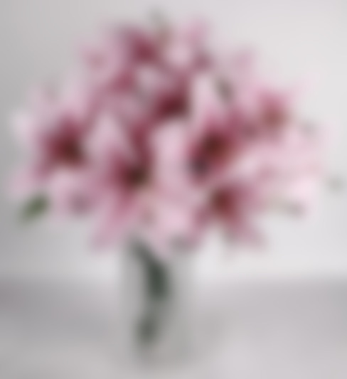 Pink Lily bunches in a minimalist arrangement:  Living room by Uberlyfe