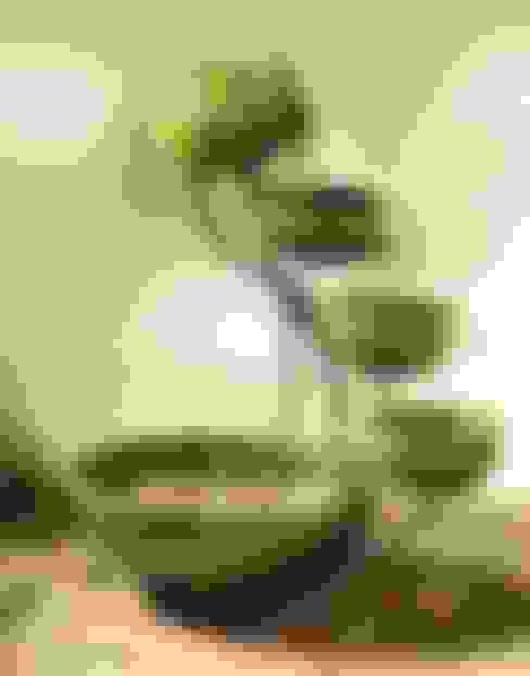 Jardines de estilo  por Damla Şelale