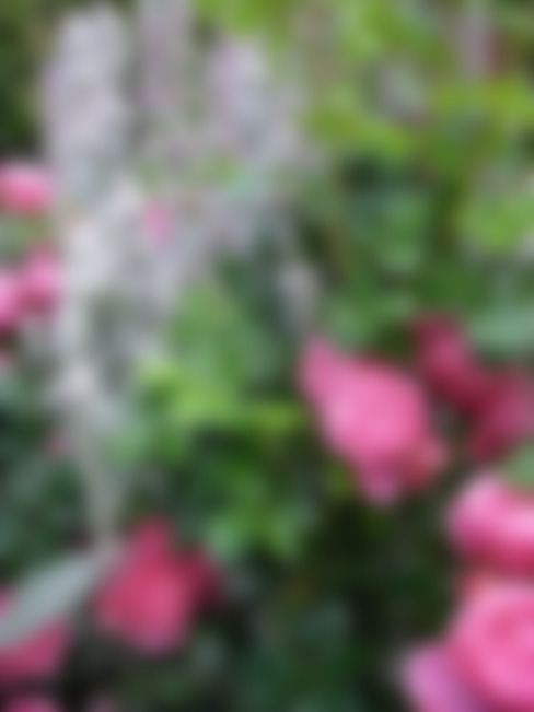Giardino in stile  di Tina Brodkorb Landschaftsarchitektur