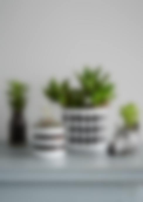 Monochrome Planter Collection:  Household by rigby & mac
