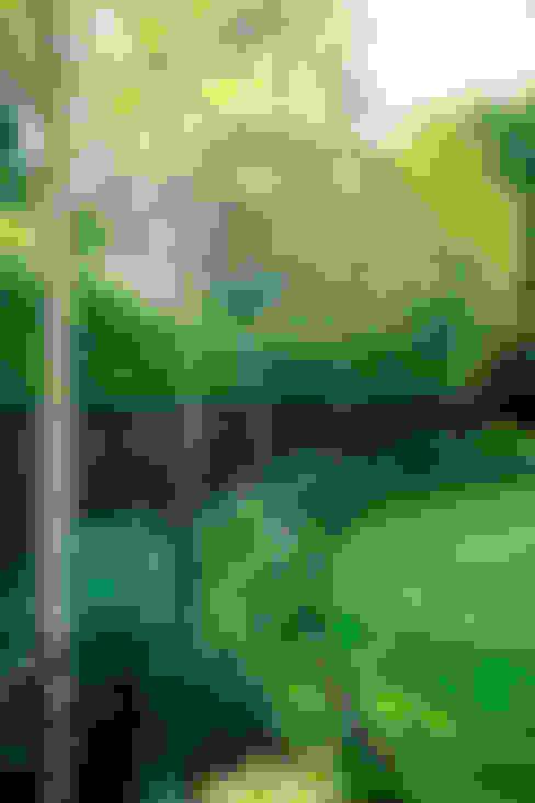 Taman by Barnes Walker Ltd