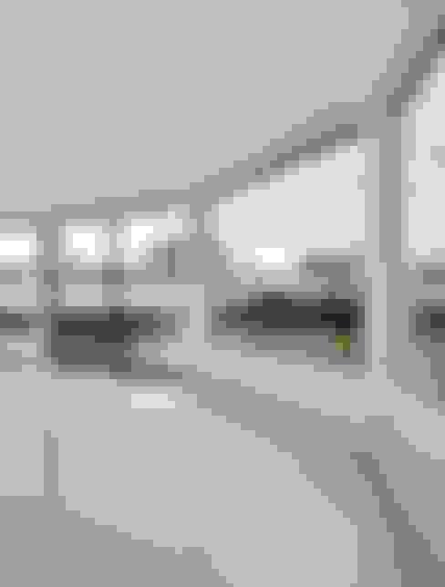 Окна в . Автор – JAMIE FALLA ARCHITECTURE