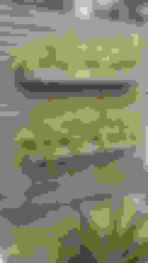 Marcos Assmar Arquitetura | Paisagismo:  tarz Bahçe