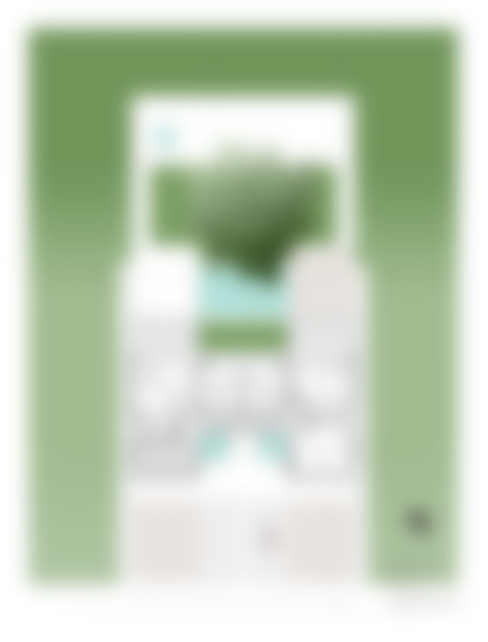 تنفيذ Yucatan Green Design