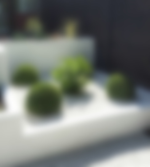 Garden by Gardenplan Design