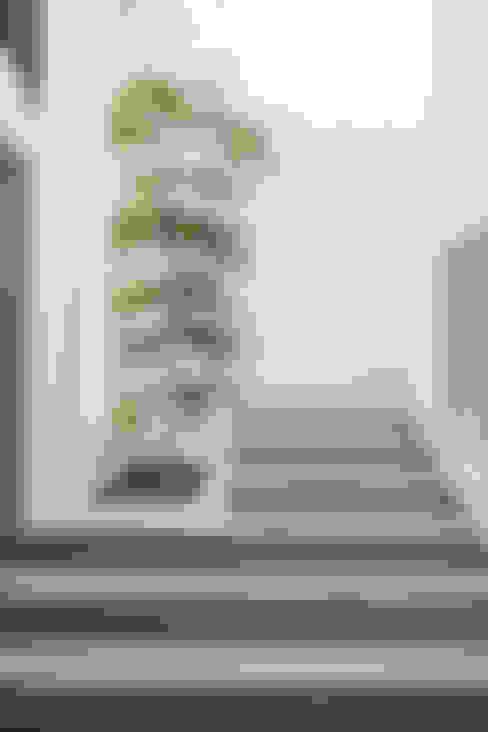 Pasillos y vestíbulos de estilo  por IX2 arquitectura