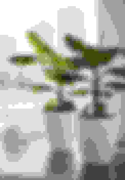 室內景觀 by Artificial Green