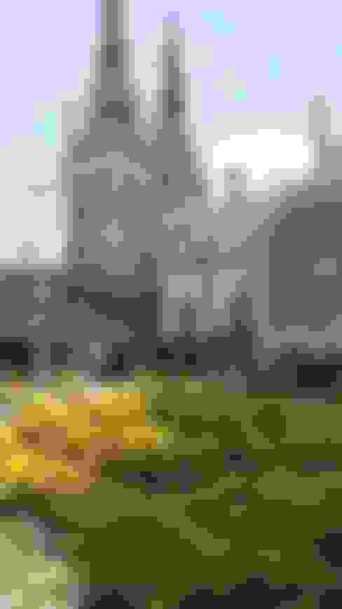 PLAZA SAN ROQUE - BARRANQUILLA: Jardines de estilo  por BRASSICA SOLUCIONES PAISAJISTICAS S.A.S.