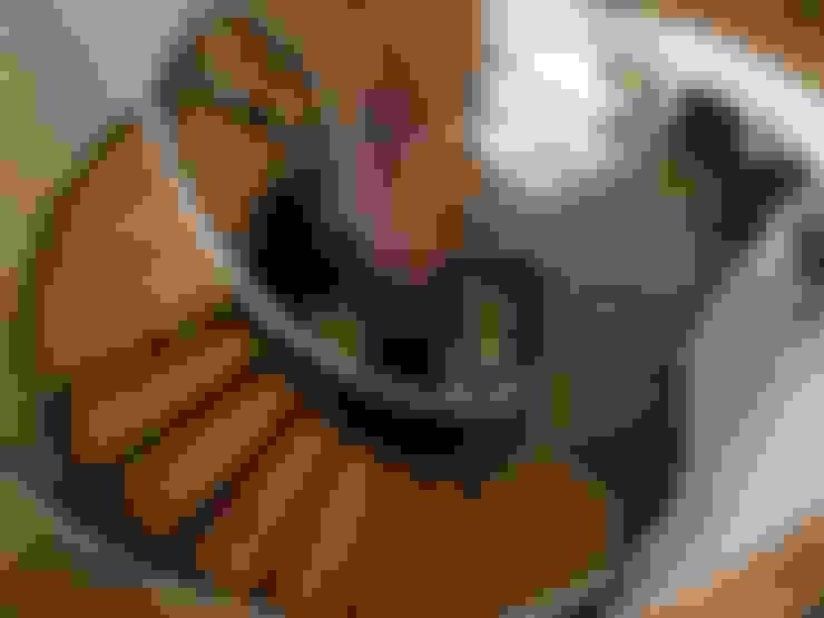 Couloir, entrée, escaliers de style  par Capra Architects