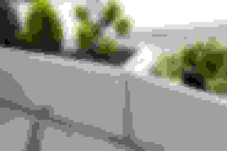 حیاط by Monomentals