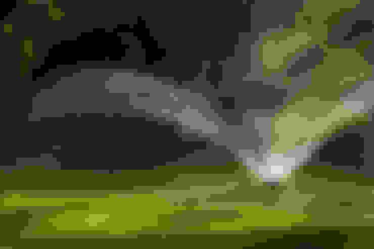 Сад  в . Автор – Dal Ben Giardini