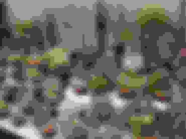 Jardín de estilo  por Craig House Cacti