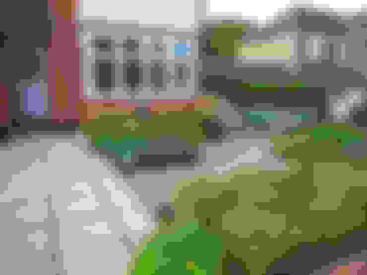 Сады в . Автор – Fenton Roberts Garden Design