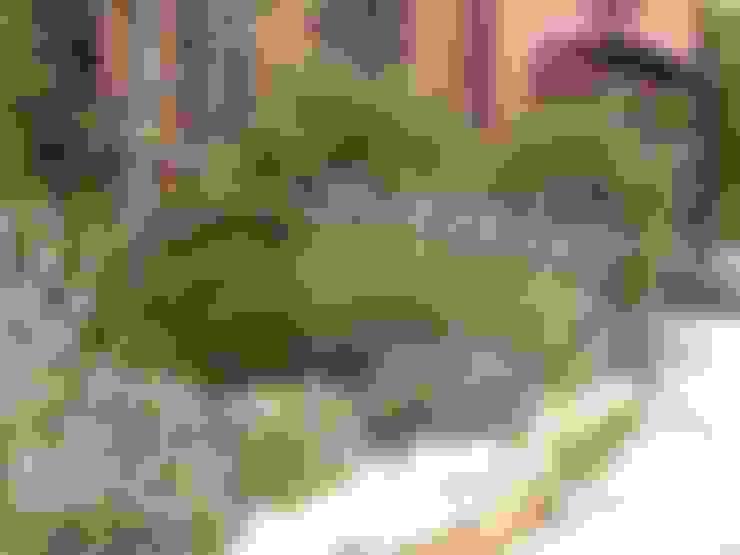Vườn by giardini di lucrezia