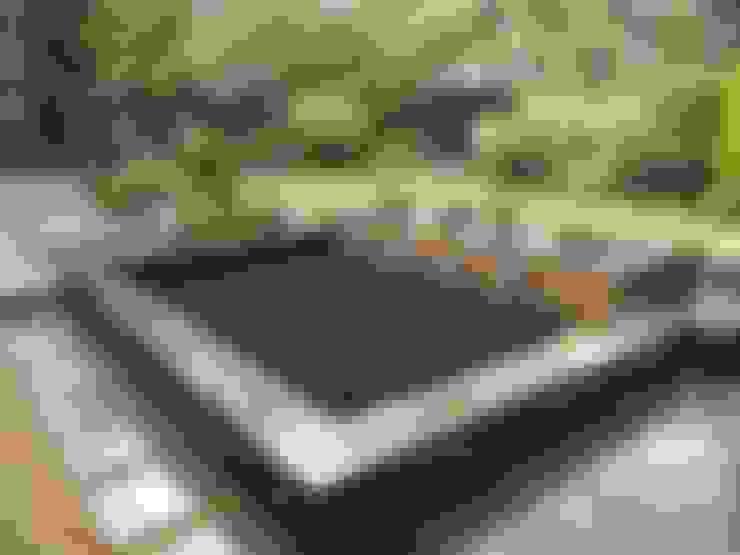 Aquajoy water gardens ltd:  tarz Bahçe