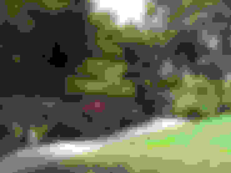 Jardins  por Cherry Mills Garden Design