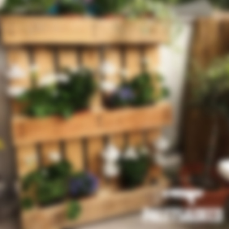 Garten von Palets&Deco
