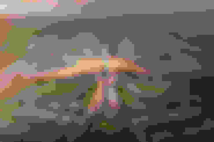 Aeropuertos de estilo  por Zaha Hadid Architects