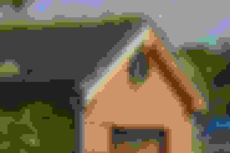 Organic Roofs:  tarz Evler