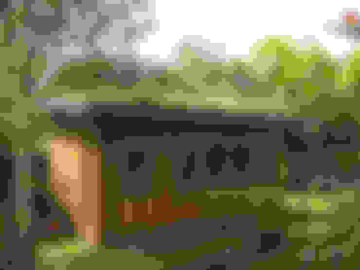 Organic Roofs:  tarz Bahçe