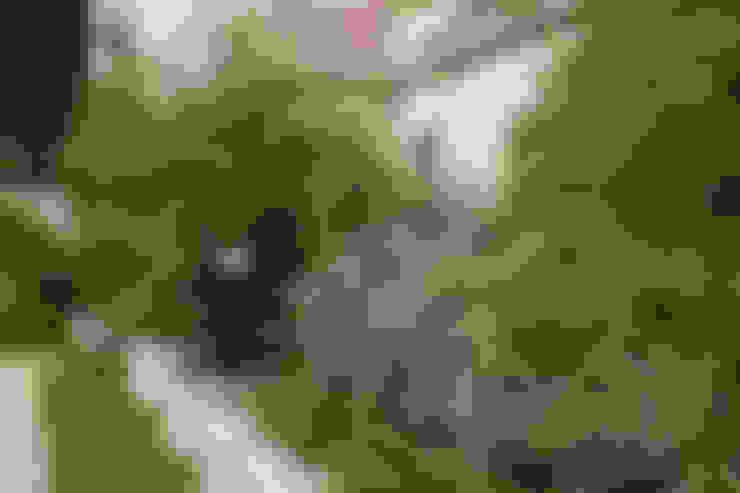 Terrazas de estilo  por juliana freitas paisagismo