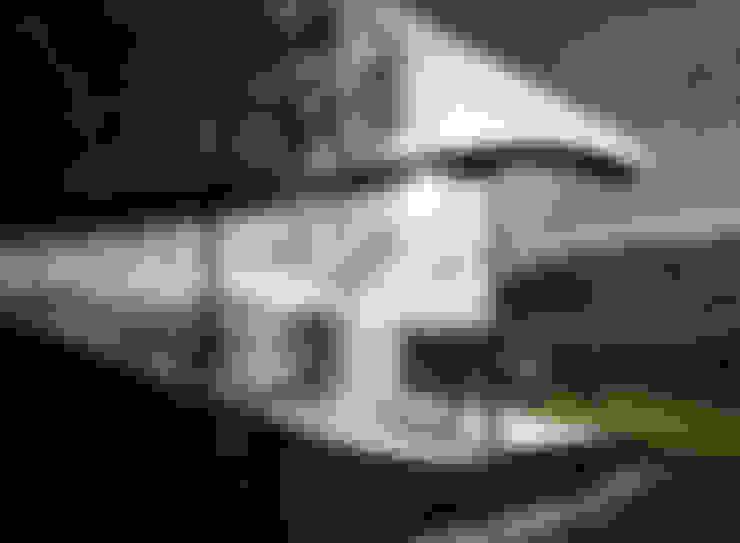 Peter Pichler Architecture:  tarz Evler