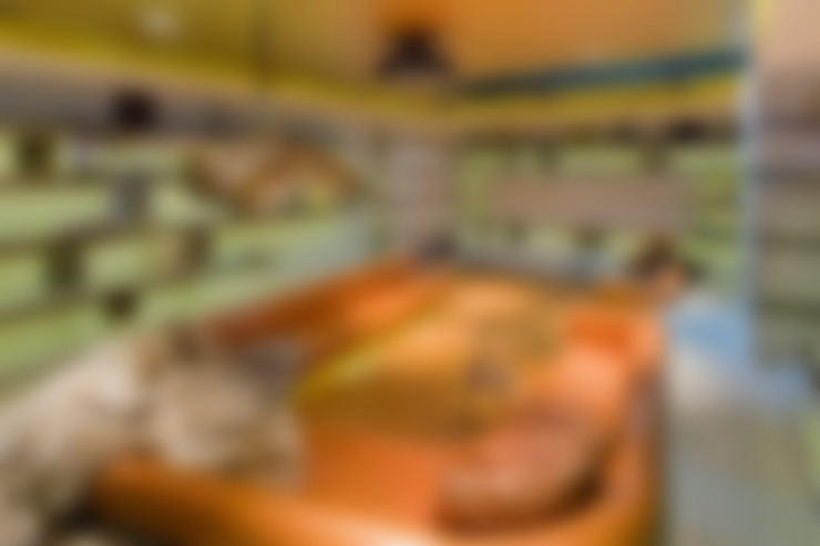 غرفة الميديا تنفيذ Will Eckersley