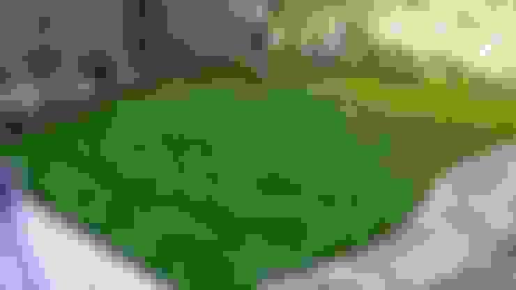 Garden by Nazarian Espaces Verts
