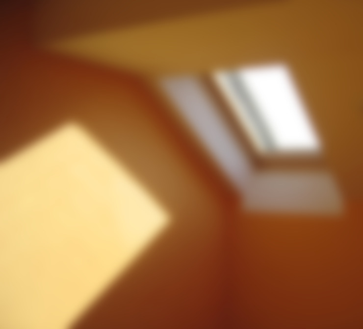 Windows & doors  by Circumflex Chartered Architects