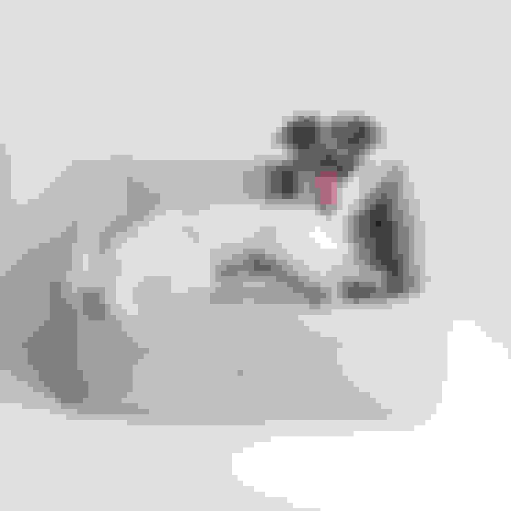 Livings de estilo  por Cloud 7 Finest Interiors for Dogs & Dog Lovers
