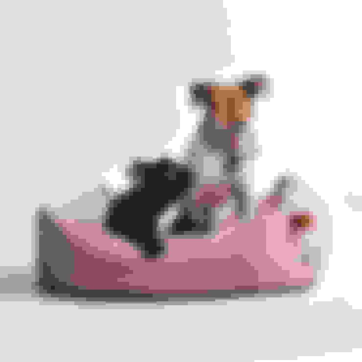 客廳 by Cloud 7 Finest Interiors for Dogs & Dog Lovers