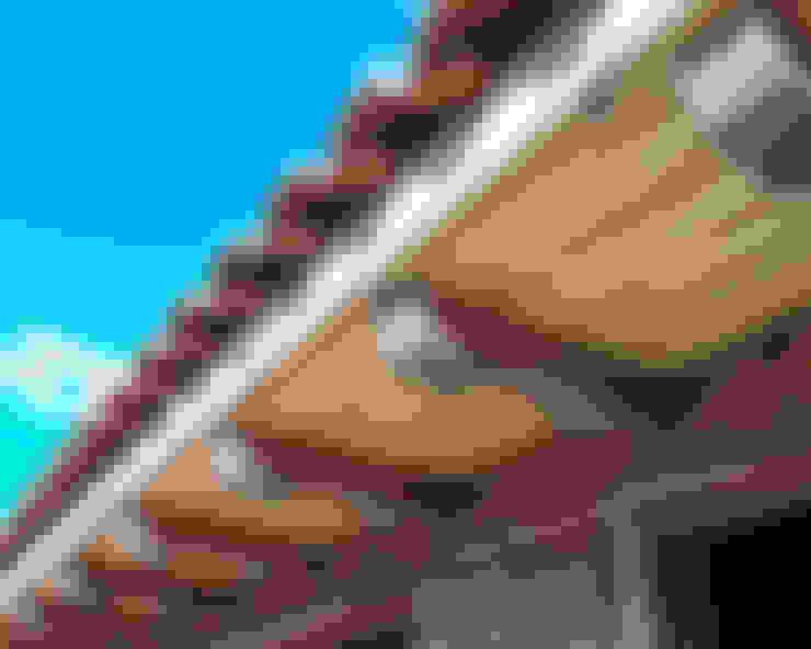 Casas de estilo  por panelestudio