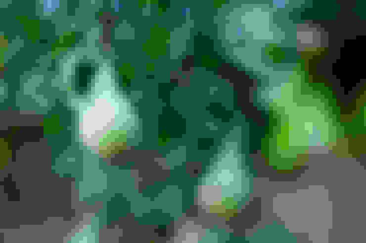 Сад  в . Автор – Mocking Hoveniers
