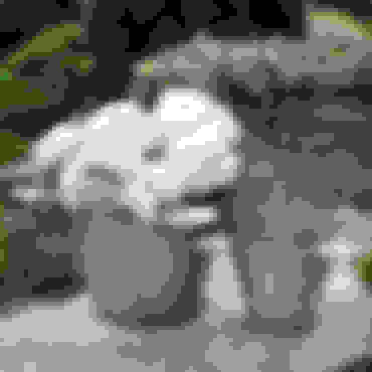 Jardines de estilo  por ELLA JAMES