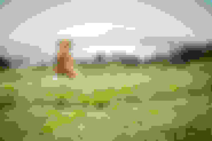 露臺 by 虎設計工房