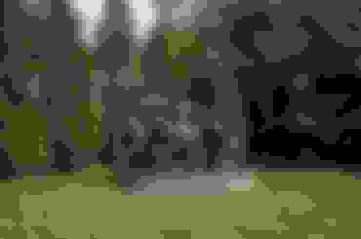 Купание Апполона: Сад  в . Автор – ArtForm