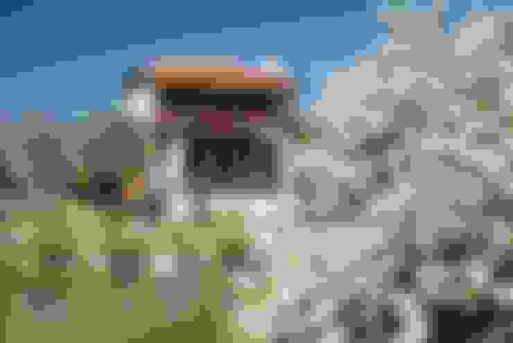 Hoyran Wedre Country Houses – Balayı Evi:  tarz Evler